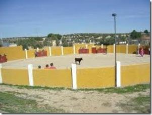 Capeas en Arroyomolinos