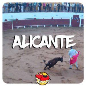 Capeas en Alicante