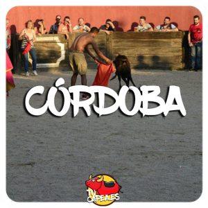 Capeas Cordoba