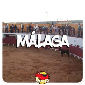 Capeas Málaga