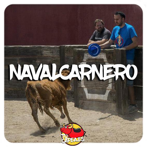 Capeas en Navalcarnero
