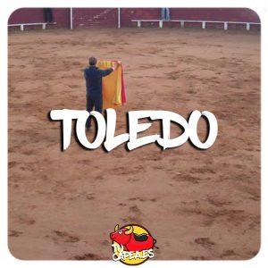 Capeas Toledo